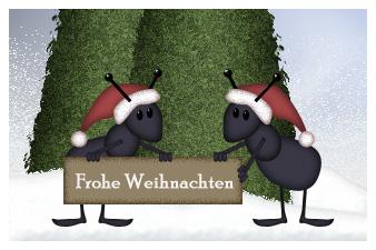 Weihnachts-Ameisen