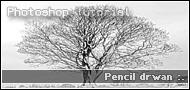 Pencil Drawn