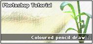 Coloured pencil draw