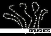 Photoshop Brushes 171 -
