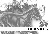 Photoshop Brushes 169 -