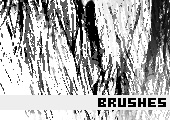 Photoshop Brushes 1 -