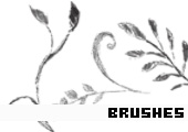 Photoshop Brushes 154 -