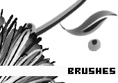 Photoshop Brushes 162 -