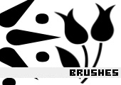 Photoshop Brushes 98 -