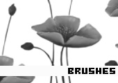 Photoshop Brushes 166 -