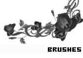 Photoshop Brushes 163 -