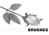 Photoshop Brushes 149 -