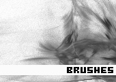 Photoshop Brushes 158 -