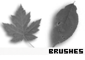 Photoshop Brushes 124 -