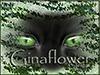 Ginaflower